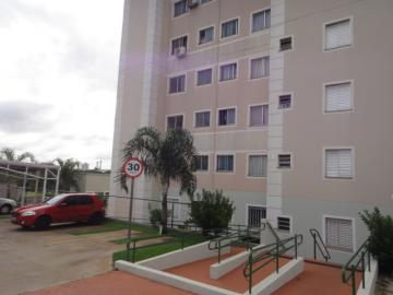 Comprar Apartamento / Padrão em SAO JOSE DO RIO PRETO apenas R$ 180.000,00 - Foto 22