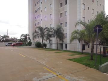 Comprar Apartamento / Padrão em SAO JOSE DO RIO PRETO apenas R$ 180.000,00 - Foto 25