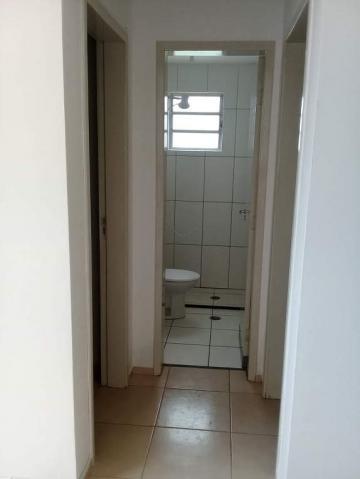 Comprar Apartamento / Padrão em São José do Rio Preto R$ 135.000,00 - Foto 5