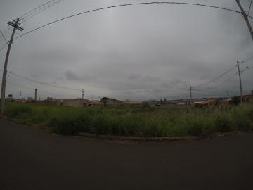 Comprar Terreno / Padrão em Bady Bassitt R$ 90.000,00 - Foto 1