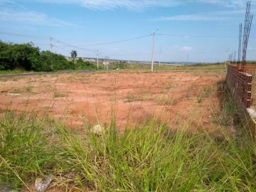 Comprar Terreno / Padrão em Bady Bassitt apenas R$ 50.000,00 - Foto 2