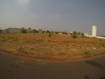 Sao Jose do Rio Preto Residencial Vila Madalena Terreno Venda R$359.000,00  Area do terreno 326.80m2