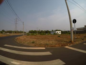 Sao Jose do Rio Preto Residencial Vila Madalena Terreno Venda R$300.000,00  Area do terreno 272.95m2