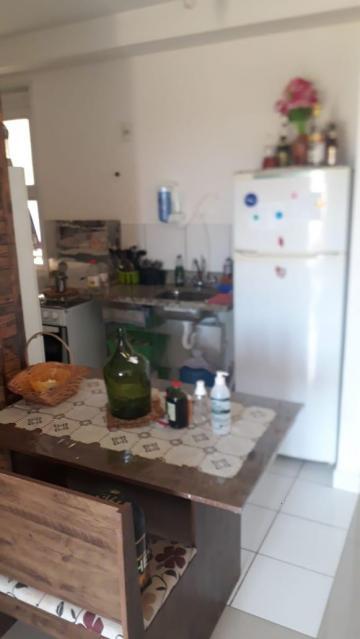 Comprar Apartamento / Padrão em São José do Rio Preto apenas R$ 260.000,00 - Foto 14