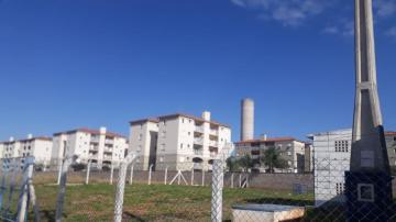 Comprar Apartamento / Padrão em São José do Rio Preto apenas R$ 260.000,00 - Foto 3