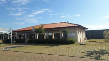 Comprar Apartamento / Padrão em São José do Rio Preto apenas R$ 260.000,00 - Foto 6