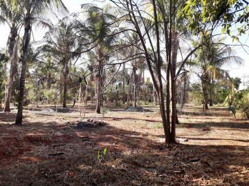 Comprar Rural / Chácara em São José do Rio Preto R$ 620.000,00 - Foto 16