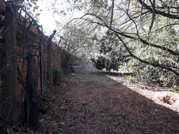 Comprar Rural / Chácara em São José do Rio Preto R$ 620.000,00 - Foto 17