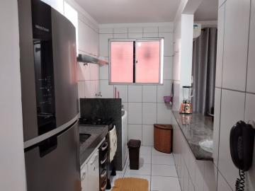 Comprar Apartamento / Padrão em São José do Rio Preto apenas R$ 157.000,00 - Foto 8