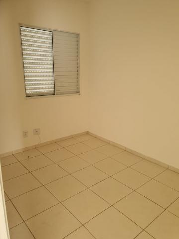 Alugar Casa / Condomínio em São José do Rio Preto R$ 1.100,00 - Foto 12