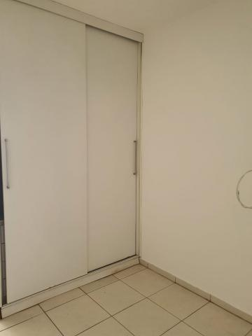 Alugar Casa / Condomínio em São José do Rio Preto R$ 1.100,00 - Foto 14