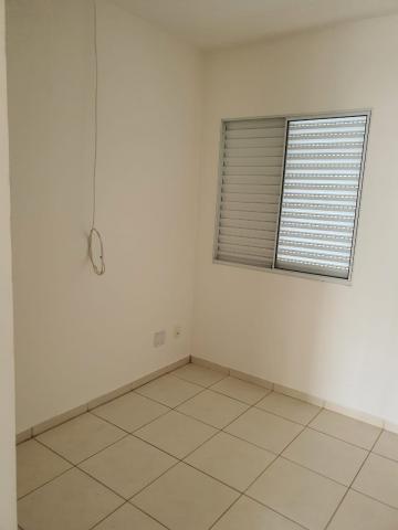 Alugar Casa / Condomínio em São José do Rio Preto R$ 1.100,00 - Foto 16