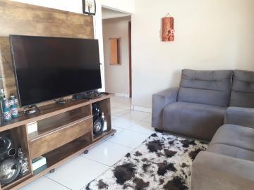Comprar Casa / Padrão em São José do Rio Preto R$ 300.000,00 - Foto 4