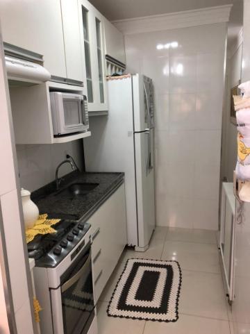 Comprar Apartamento / Padrão em São José do Rio Preto apenas R$ 270.000,00 - Foto 7