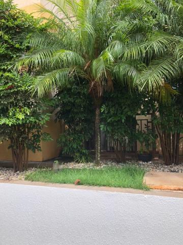 Comprar Apartamento / Padrão em São José do Rio Preto apenas R$ 270.000,00 - Foto 25