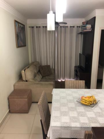 Comprar Apartamento / Padrão em São José do Rio Preto apenas R$ 270.000,00 - Foto 3