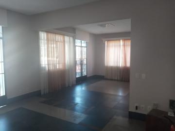 Alugar Comercial / Casa Comercial em São José do Rio Preto R$ 6.500,00 - Foto 3