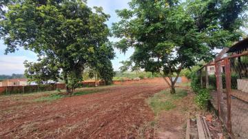 Comprar Rural / Chácara em Cedral R$ 150.000,00 - Foto 4