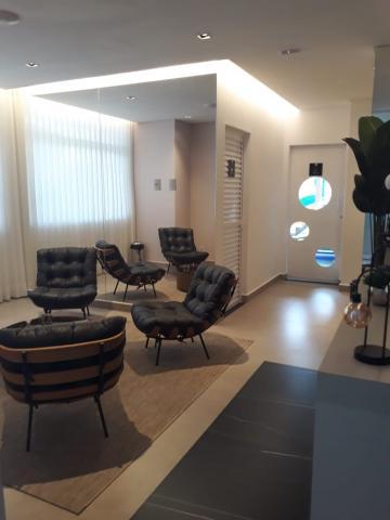 Comprar Apartamento / Padrão em São José do Rio Preto R$ 350.000,00 - Foto 1