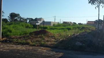Comprar Terreno / Padrão em São José do Rio Preto apenas R$ 95.000,00 - Foto 8