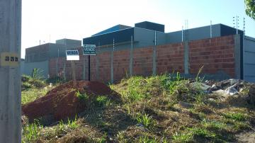 Comprar Terreno / Padrão em São José do Rio Preto R$ 90.000,00 - Foto 11