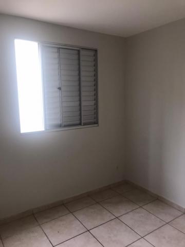 Comprar Apartamento / Padrão em Campinas apenas R$ 230.000,00 - Foto 20