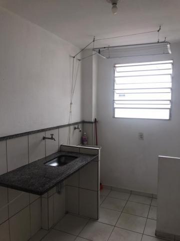 Comprar Apartamento / Padrão em Campinas apenas R$ 230.000,00 - Foto 12
