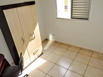Comprar Apartamento / Padrão em Campinas apenas R$ 230.000,00 - Foto 14