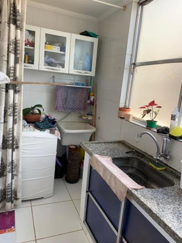 Comprar Apartamento / Padrão em São José do Rio Preto R$ 270.000,00 - Foto 3