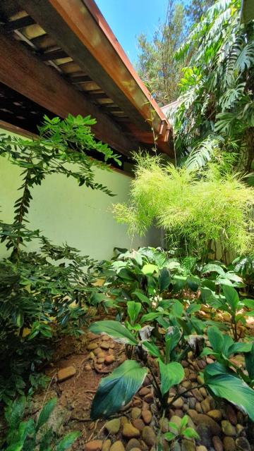Comprar Casa / Condomínio em São José do Rio Preto R$ 3.500.000,00 - Foto 44