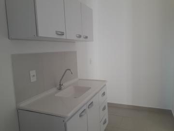 Alugar Apartamento / Padrão em São José do Rio Preto R$ 1.000,00 - Foto 5