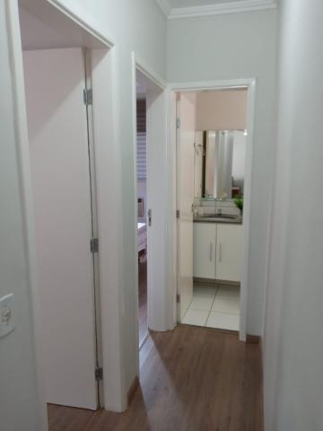Comprar Apartamento / Padrão em São José do Rio Preto apenas R$ 295.000,00 - Foto 10