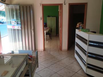 Comprar Comercial / Salão em Santa Fé do Sul R$ 900.000,00 - Foto 3