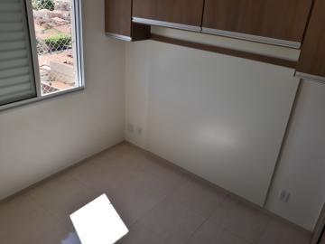 Alugar Apartamento / Padrão em São José do Rio Preto R$ 900,00 - Foto 4