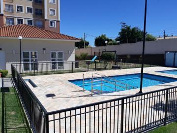 Alugar Apartamento / Padrão em São José do Rio Preto R$ 900,00 - Foto 13