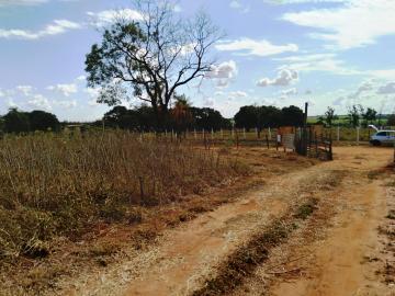 Alugar Terreno / Área em São José do Rio Preto R$ 2.000,00 - Foto 6