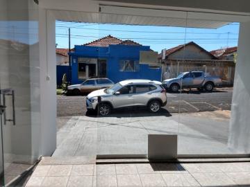 Alugar Comercial / Sala em São José do Rio Preto R$ 1.350,00 - Foto 3