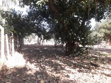 Comprar Rural / Chácara em São José do Rio Preto R$ 650.000,00 - Foto 14