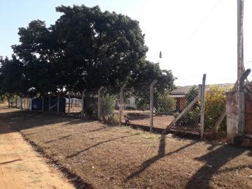 Comprar Rural / Chácara em São José do Rio Preto R$ 650.000,00 - Foto 2
