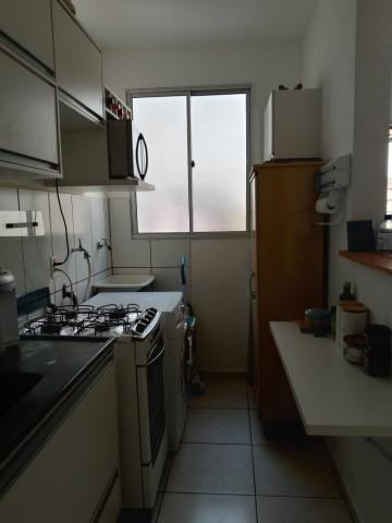 Comprar Apartamento / Padrão em São José do Rio Preto R$ 210.000,00 - Foto 4