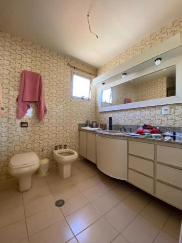 Alugar Apartamento / Padrão em São José do Rio Preto R$ 1.200,00 - Foto 9
