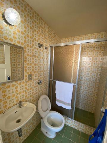 Alugar Apartamento / Padrão em São José do Rio Preto R$ 1.200,00 - Foto 11