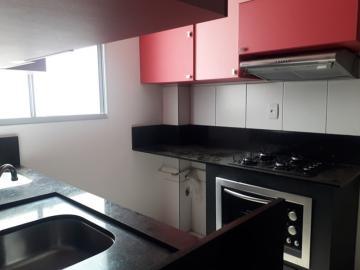 Alugar Apartamento / Padrão em São José do Rio Preto R$ 850,00 - Foto 4