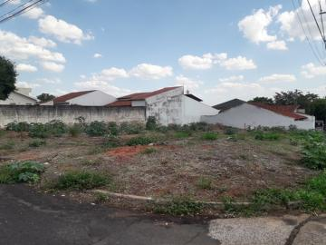 Comprar Terreno / Padrão em São José do Rio Preto R$ 950.000,00 - Foto 1