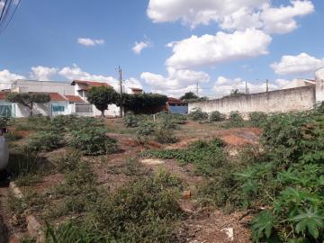 Comprar Terreno / Padrão em São José do Rio Preto R$ 950.000,00 - Foto 3
