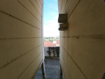 Alugar Apartamento / Padrão em São José do Rio Preto apenas R$ 450,00 - Foto 10